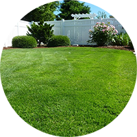daves-mt-vernon-lawn-service-lawnpic
